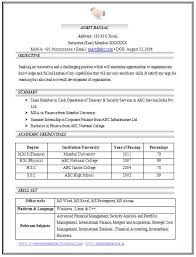 Resume Format For Experienced Sample Template Example of Beautiful Excellent Professional Curriculum Vitae   Resume   CV Format with