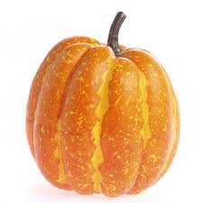 Image result for gourd and pumpkin