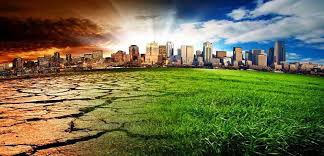 essay on problems of pollution  speech about problems of  problems of pollution