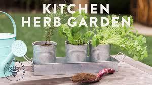 Kitchen Windowsill Herb Garden Kitchen Herb Garden With Natures Care Honeysuckle Youtube