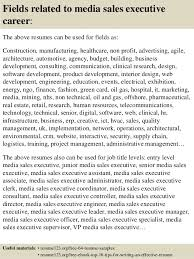top  media  s executive resume samples       fields related to media  s