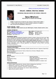 sample resume for it professional professional resume resume samples for experienced it professionals resume