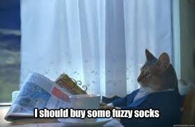 I should buy some fuzzy socks - Sophisticated Cat - quickmeme via Relatably.com