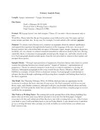 examples of literary essay our work literary analysis essay