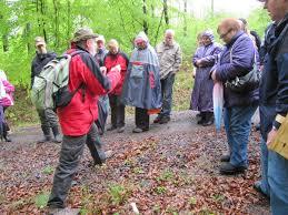 Winfried Noack erklärt den Buchenwald. - Barsinghausen - 2086040_web