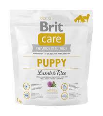 Brit puppy: каталог с фото и ценами 18.10.20 KUPI-RU