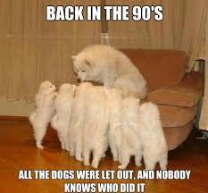 Storytelling-Dog-meme.jpg via Relatably.com