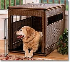 tips for crate training furniture style dog crates