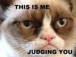 Grumpy cat on Pinterest | Grumpy Cat Meme, Meme and Grumpy Kitty via Relatably.com