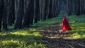 what is the moral of little red riding hood com
