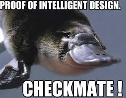 proof of intelligent design. checkmate ! - Persistent Platypus ... via Relatably.com