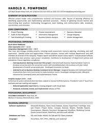 That  s Resume Summary Sample  Bitwin co   sample resume summary statements