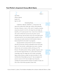 essay writing pdf example of an essay  mla format sample essay examples  how to