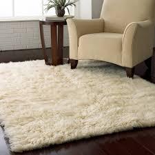 Image Of White Shag Carpet Picture