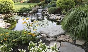 Small Picture How to design your own garden pond Garden Life Style
