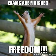 exams are finished freedom!!! - Praising Squirrel   Meme Generator via Relatably.com