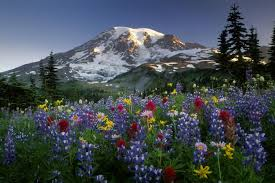 Resultado de imagen de fotos de montañas