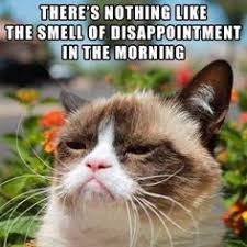 Good ol' Grumpy Cat on Pinterest | Grumpy Cat Meme, Grumpy Cat and ... via Relatably.com