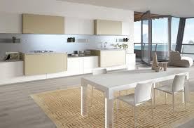 Contemporary Kitchen Rugs Contemporary Kitchen Best Minimalist Kitchens With Perfect