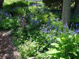 Small Picture Garden Design Garden Design with Mimius Wildflower Garden on