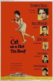 cat on a hot tin roof essay