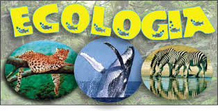 Resultado de imagem para ecologia significado