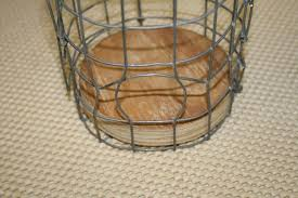 Starling Trap And besides  I already have a     sparrow trap     and they can    t escape from that