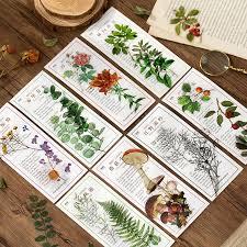 40pcs/pack Nature Collection Sticker Set <b>Green</b> Herb Plant Leaf ...