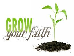 Image result for planting seeds god