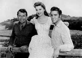 Image result for Love Me tender 1956