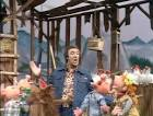 Country Side of Jim Nabors [Pair]