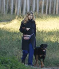 The Best Leashes and Techniques to Train a <b>Strong Dog</b> to Walk on ...