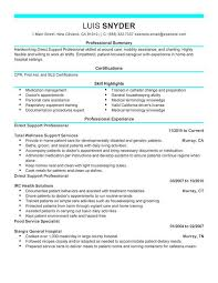 Breakupus Prepossessing Professional Resume Writing Services