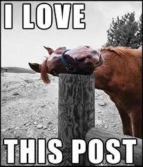 I love this post | Know Your Meme via Relatably.com