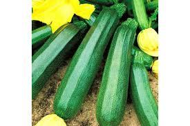 Купить <b>Кабачок Диамант F1</b> - отзывы садоводов с фото и ...