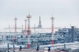 "New high-strength ""<b>fishbone</b>"" well built at Gazprom Neft's Vostochno ..."