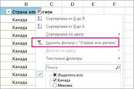 Очистка и удаление фильтра - Excel