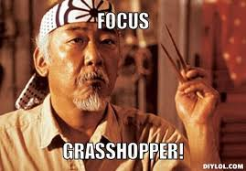 Mr Miyagi Focus Meme Generator Focus Grasshopper 5e64b5.jpg ... via Relatably.com