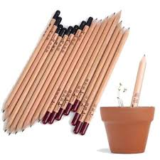 <b>8PCS Idea Germination Pencil</b> Set To Grow Pencil Sprouted Pencil ...