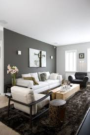 Paints Colors For Living Room 25 Best Ideas About Living Room Colors On Pinterest Living Room