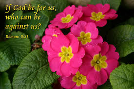 Image result for if god be for us who can be against us