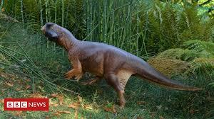 <b>Dinosaur's</b> camouflage <b>pattern</b> revealed - BBC News