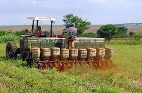 Resultado de imagen para guarico produccion agricola