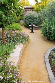 goldfines decomposed granite crushed rock path in california backyard drought tolerant garden with arbutus bedroommagnificent lush landscaping ideas
