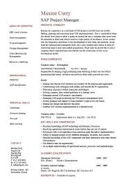 how to became project manager resume job description        project manager description for resume sap project manager resume sample job description