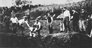 Image result for british machine removing dead bodies from extermination camps