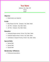 online resume generator for experience   create professional    templates for simple resume