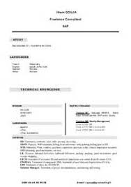 resume travel consultant resume for richard byrom oracle applications consultant junior travel consultant resume