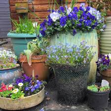Small Picture 7 Pro Tips for Starting a Container Garden Martha Stewart