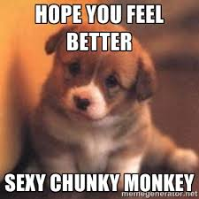 Hope you feel better Sexy chunky monkey - cute puppy | Meme Generator via Relatably.com